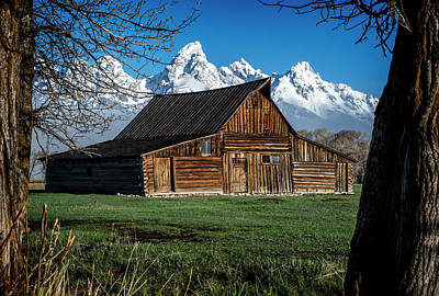 Photograph - Moulton Barn And Tetons by Scott Read