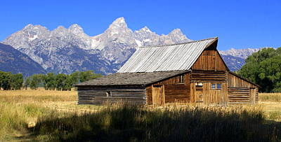 Teton Barn 5 Art Print by Marty Koch