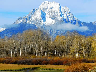 Photograph - Teton Fall by Charlotte Schafer