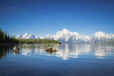 Photograph - Teton  by Jill Laudenslager