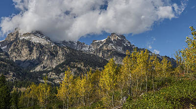 Photograph - Teton Magic by Torrey McNeal