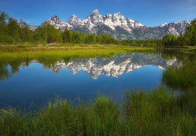 Photograph - Teton Meadows by Darren  White
