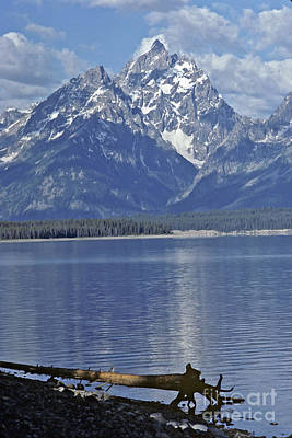 Photograph - Teton Morning by Kevin McCarthy