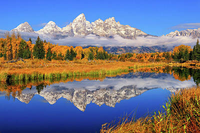 Photograph - Teton Morning Mirror by Greg Norrell