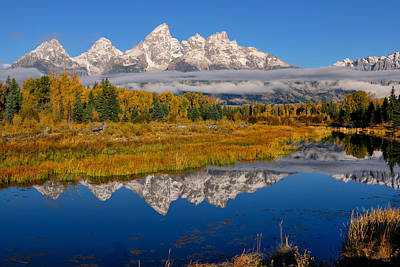 Photograph - Teton Morning Reflections by Greg Norrell