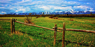Photograph - Teton Park Spring by Norman Hall