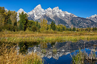 Photograph - Teton Reflections by Linda Shannon Morgan
