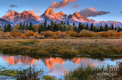 Photograph - Teton Reflections Over The Frosty Willows by Adam Jewell