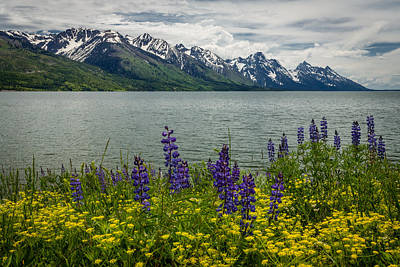 Unique Photograph - Teton Spring by Gary Migues