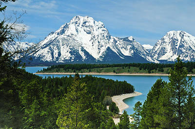 Photograph - Teton Spring by Greg Norrell