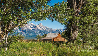 Photograph - Tetons And Moulton Barn by Sharon Seaward