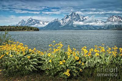 Photograph - Tetons From Jenny Lake by Sonya Lang