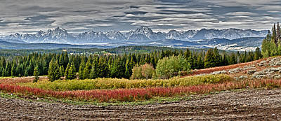 Photograph - Tetons by John Gilbert