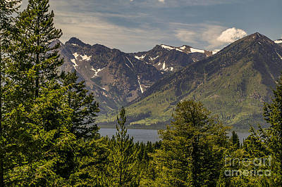Photograph - Tetons Landscape by Sue Smith