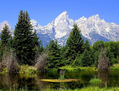 Tetons Art Print by Marty Koch