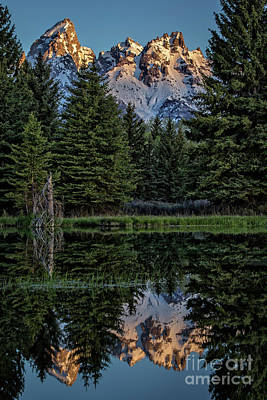 Photograph - Tetons Reflection by Sonya Lang