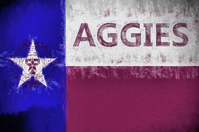 Texas A And M Digital Art - Texas Aggies State Flag by JC Findley