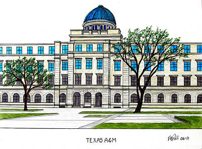 Drawing - Texas Am University by Frederic Kohli
