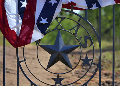 Photograph - Texas And The Red White And Blue by Nadalyn Larsen