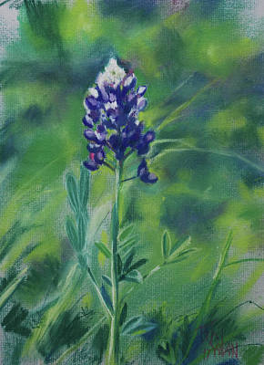Texas Beauty Art Print by Billie Colson