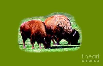Bison Digital Art - Texas Bison by Linda Phelps
