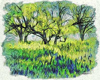 Photograph - Texas Bluebonnets Willow City Loop by Rebecca Korpita