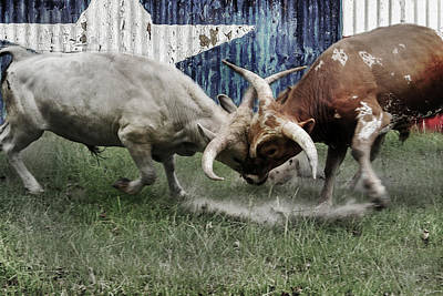 Digital Art - Texas Bull Fight  by Brad Thornton