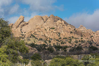 Photograph - Texas Canyon 2 by Pamela Williams