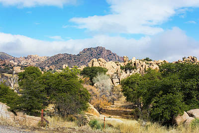 Photograph - Texas Canyon by Pamela Williams