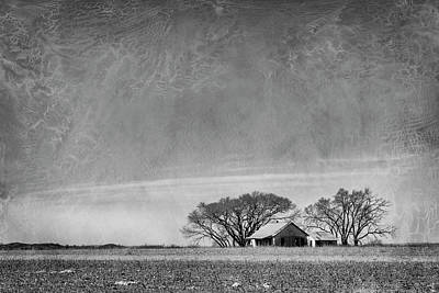 Photograph - Texas Cotton Farm by Mary Lee Dereske
