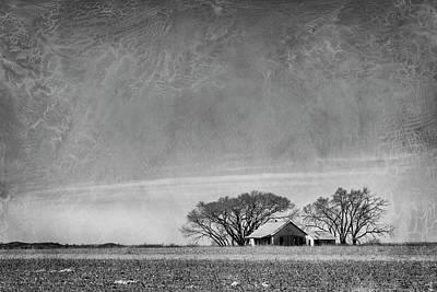 Photograph - Texas Cotton Farm by Mary Lee Dereske