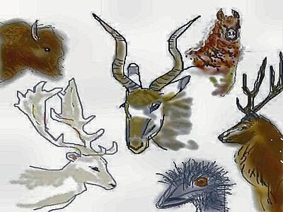 Emu Digital Art - Texas Exotics by Carole Boyd