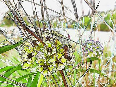 Digital Art - Texas Grasslands by Robert Rhoads