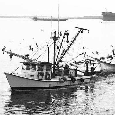 Photograph - Texas Gulf Coast Shrimp Boat by Adam Graser
