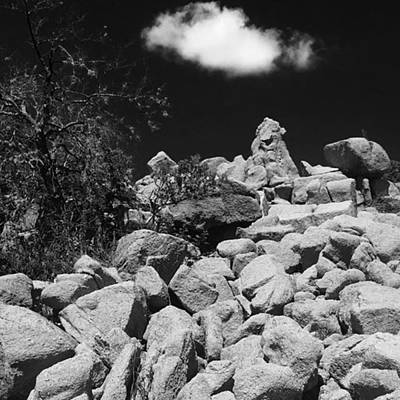 Photograph - Texas Hill Country by Adam Graser