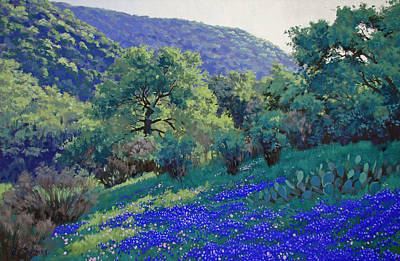 Texas Hill Country Blues Art Print by Russell Cushman