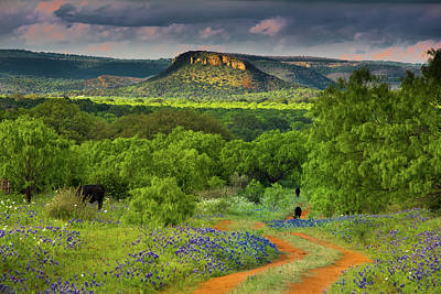 Photograph - Texas Hill Country Ranch Road by Darryl Dalton