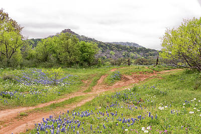 Photograph - Texas Hill Country by Victor Culpepper