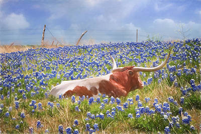Longhorn Photograph - Texas Is Longhorns And Bluebonnets by David and Carol Kelly