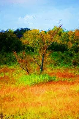 Photograph - Texas Landscape 102310 by David Lane