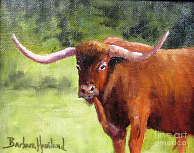 Painting - Texas Londhorn by Barbara Haviland