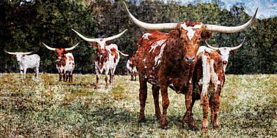 Photograph - Texas Longhorn Cattle 5314.03 by M K Miller
