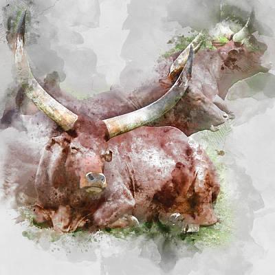 Texas Longhorn Watusi Watercolor Portrait - By Diana Van  Art Print
