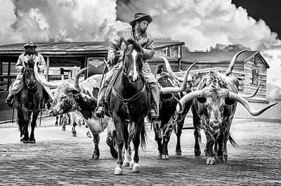 Cattle Drive Photograph - Texas Longhorns by Kelley King
