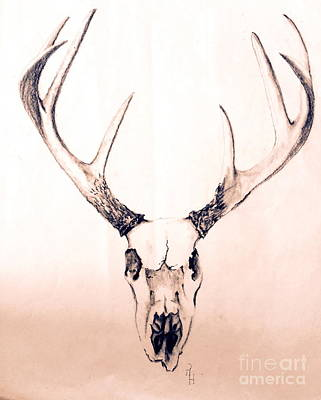Painting - Texas Mount Deer by Rhonda Hancock