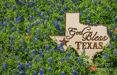 Photograph - Texas Pride by John Roberts