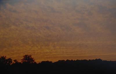 Photograph - Texas Sky by Rob Hans