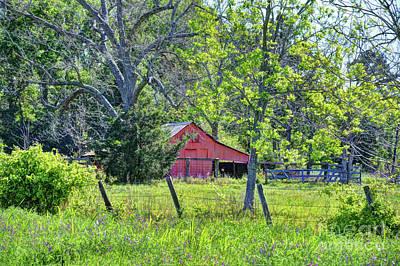 Photograph - Texas Springtime Farm by Savannah Gibbs