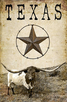 Longhorn Digital Art - Texas Tough by Daniel Hagerman