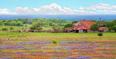 Photograph - Texas Wildflower Farmland by Lynn Bauer